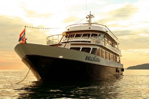 Liveaboard Early Bird's & Last Minutes