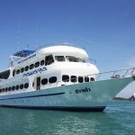 Thailand Liveaboard Safaris with MV Pawara